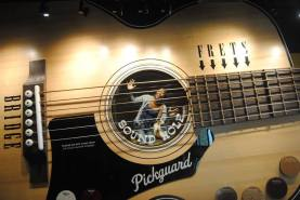 TRAPPED IN THE COUNTRY MUSIC HALL OF FAME